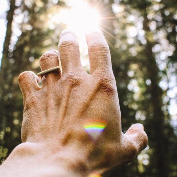 Forest, hand, sun
